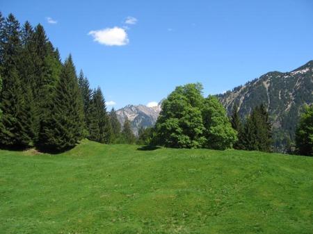 09 05 17 Abstieg zum Freibergsee1